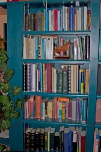 IMG_4119 lindsay mckenna bookshelf 1 en az