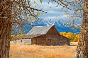 DSC_0030 1 moulton barn from cottonwoods tetons grand tetons national park en az