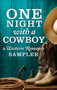 SMALL Jpeg One Night with a Cowboy COVER final